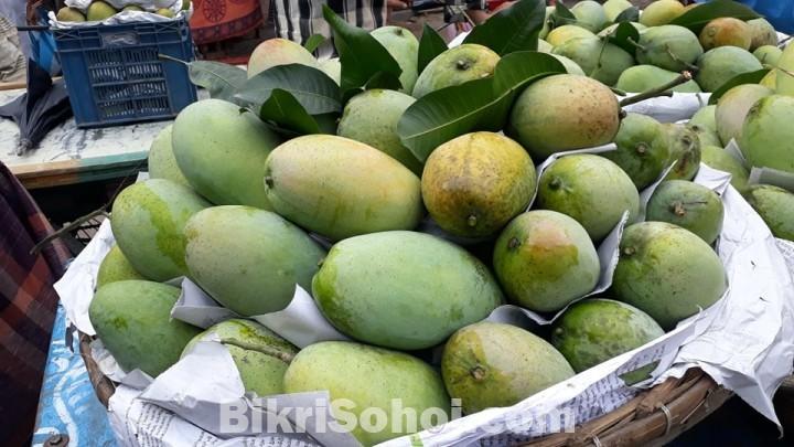 চাঁপাইনবাবগঞ্জের সু-মিষ্টি ফজলী আম