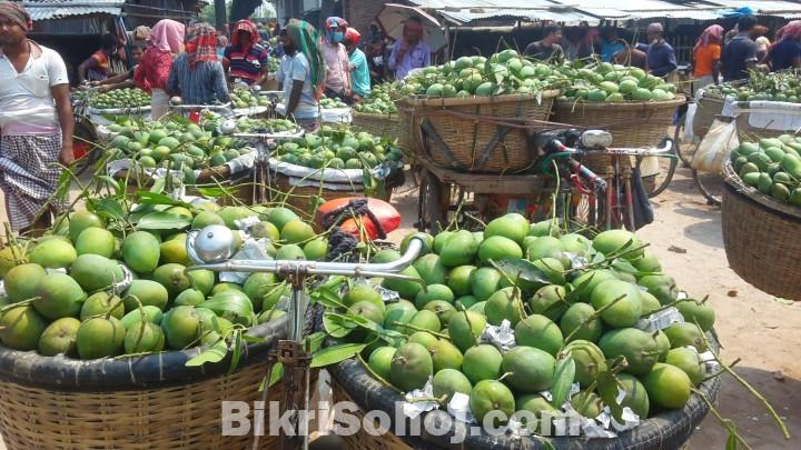 চাঁপাইনবাবগঞ্জের সু-মিষ্টি আমরুপালী অর্ডার দিন