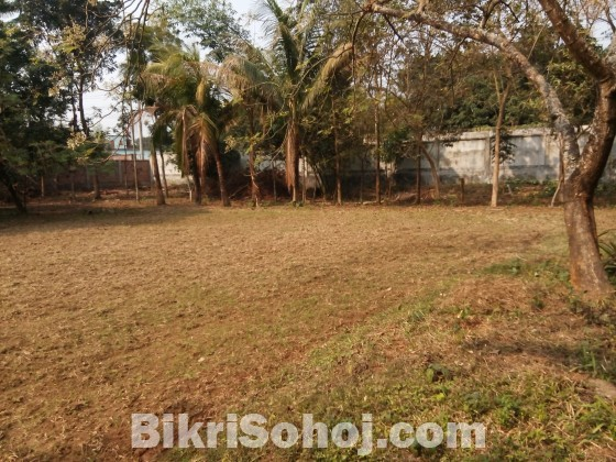 Industrial / Commercial plot at sale