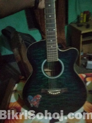 TGM guitar