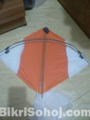 ঘুড়ি (kite)