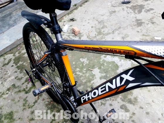 Brand Phoenix 3 month use